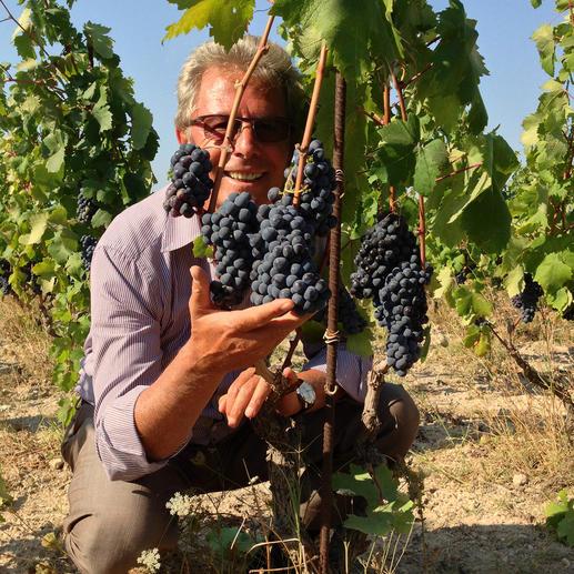 Primitivo Doncosimo 2016, Cantine Due Palme, Salento, Italien Dreimal Weingut des Jahres Italiens. Cantine due Palme. (Vinitaly, 2007, 2009, 2014)