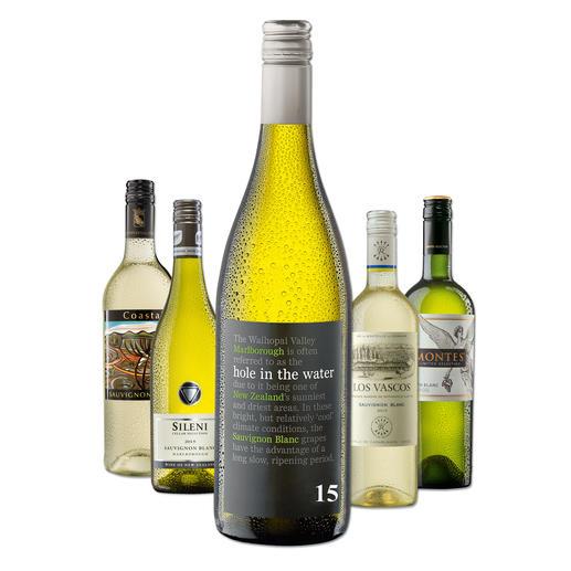 """Testpaket der Nominierten """"Übersee-Sauvignon Blanc bis 16 Franken, Juni 2016"""" - Pro-Idee Wine Competition"""