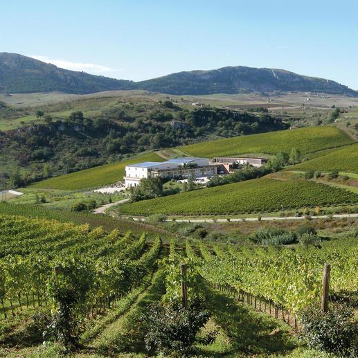 Shymer 2013, Baglio di Pianetto, Sizilien, Italien 91 Punkte von Robert Parker. (Wine Advocate 226, 08/2016)  3 Gläser im Gambero Rosso 2017.