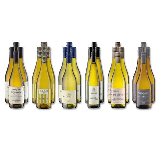 """Weinsammlung """"Die kleine Weisswein-Sammlung Herbst 2017"""", 24 Flaschen Wenn Sie einen kleinen, gut gewählten Weinvorrat anlegen möchten, ist dies jetzt besonders leicht."""