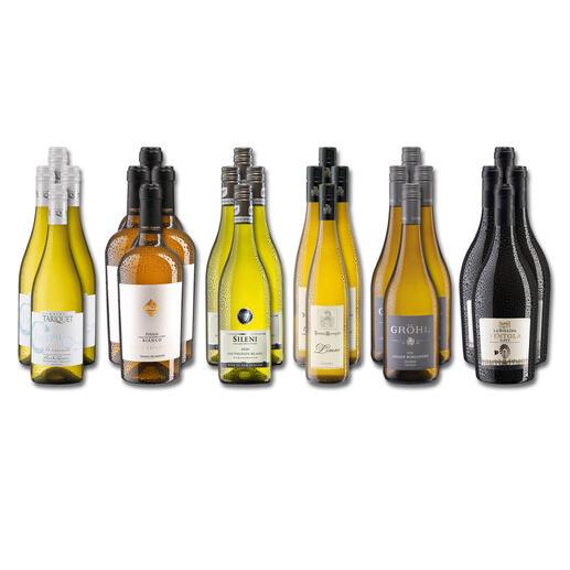 Weinsammlung - Die kleine Weisswein-Sammlung Frühjahr 2022, 24 Flaschen Wenn Sie einen kleinen, gut gewählten Weinvorrat anlegen möchten, ist dies jetzt besonders leicht.