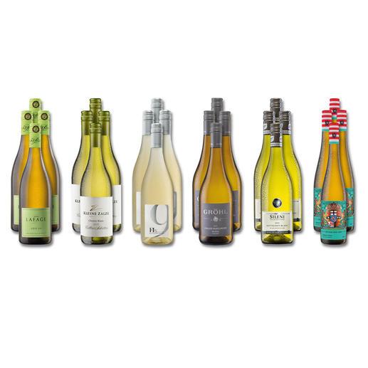 """Weinsammlung """"Die kleine Weisswein-Sammlung Sommer 2018"""", 24 Flaschen Wenn Sie einen kleinen, gut gewählten Weinvorrat anlegen möchten, ist dies jetzt besonders leicht."""