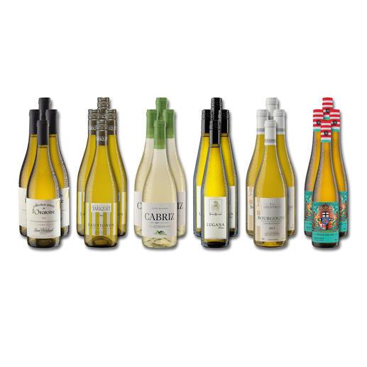 """Weinsammlung """"Die kleine Weisswein-Sammlung Herbst 2018"""", 24 Flaschen Wenn Sie einen kleinen, gut gewählten Weinvorrat anlegen möchten, ist dies jetzt besonders leicht."""