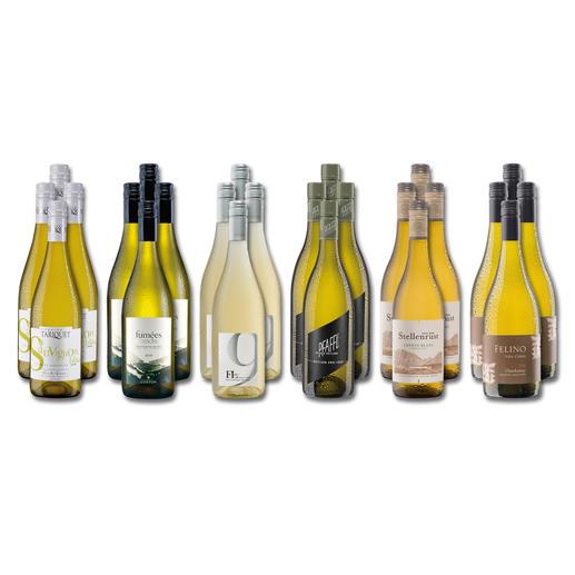 """Weinsammlung """"Die kleine Weisswein-Sammlung Herbst 2019"""", 24 Flaschen Wenn Sie einen kleinen, gut gewählten Weinvorrat anlegen möchten, ist dies jetzt besonders leicht."""