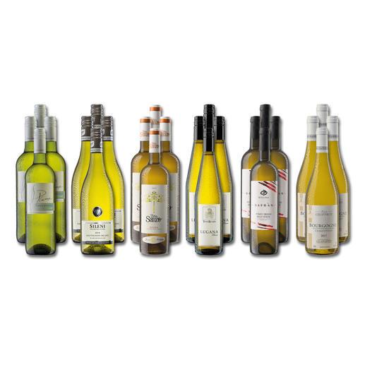 """Weinsammlung """"Die kleine Weisswein-Sammlung Winter 2019"""", 24 Flaschen Wenn Sie einen kleinen, gut gewählten Weinvorrat anlegen möchten, ist dies jetzt besonders leicht."""