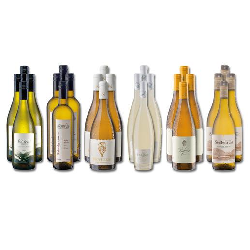 Weinsammlung - Die kleine Weisswein-Sammlung Sommer 2020, 24 Flaschen Wenn Sie einen kleinen, gut gewählten Weinvorrat anlegen möchten, ist dies jetzt besonders leicht.