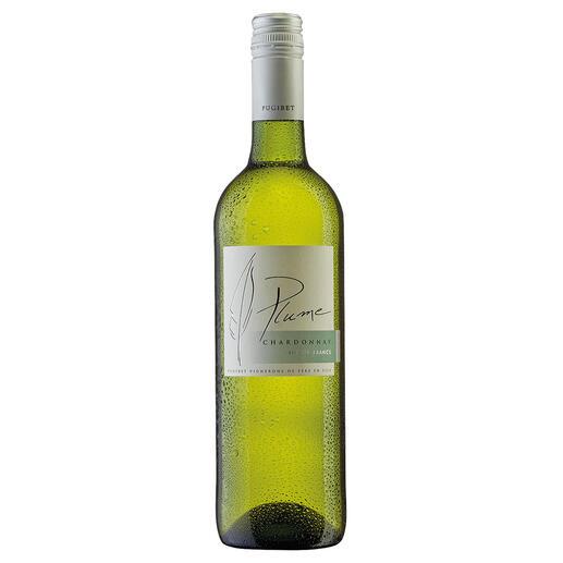 Plume Chardonnay 2020, Domaine La Colombette, Coteaux du Libron, Frankreich Genuss ohne Reue. Nur 9 % Alkohol. Aber 100 % Genuss.