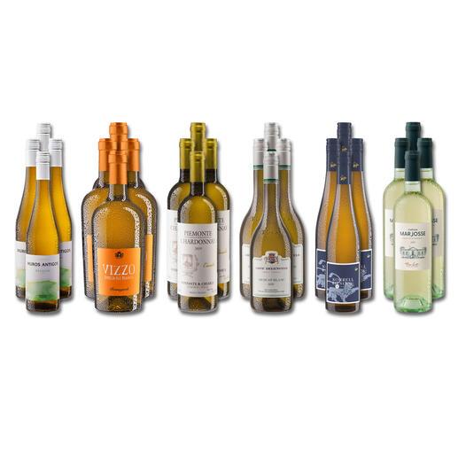 Weinsammlung - Die kleine Weisswein-Sammlung Frühjahr/Sommer 2021, 24 Flaschen Wenn Sie einen kleinen, gut gewählten Weinvorrat anlegen möchten, ist dies jetzt besonders leicht.