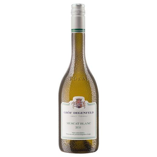 Tokaj Muscat Blanc 2020, Gróf Degenfeld Wine Estate, Tokaj, Ungarn Weltberühmt für seine edelsüssen Weine. Doch der Geheimtipp ist dieser Tokaj Muscat Blanc.